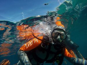 Embarcation à bord du Tara Pacific à travers les oeuvres de Noémie Sauve