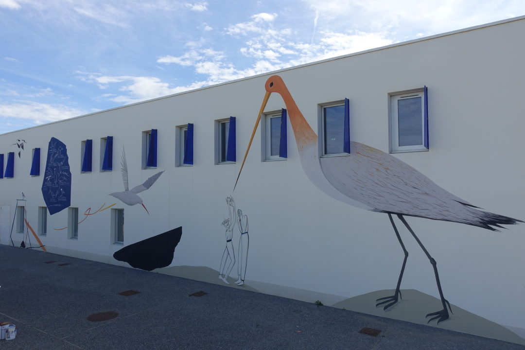 11 oiseaux migrateurs à Anglet